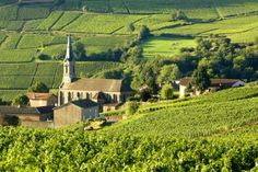 The Top 17 Places to Visit in France