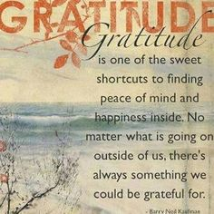 Gratitude is one of the sweet shortcuts to finding peace of mind and happiness inside
