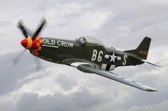 Decalque em parede norte-americano P-51 Mustang in Flight