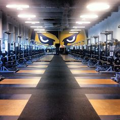 The Doctors Hospital Center for Orthopedics & Sports Medicine Weight Room at Alfonso Field at FIU Stadium. Eyes of a Panther!