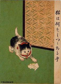What Is the Cat Trying To Do? (Neko wa nani o shitsutsu aruka?) from Ehagaki sekai, Japanese, Late Meiji era, 1908, by Komeno Hakusui