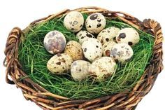 Cura cu Ouă de Prepeliţă – Pentru 100 de Boli
