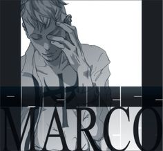 Marco the Phoenix One Piece Series, One Piece Ace, One Piece Fanart, One Piece Manga, Life Run, One Peace, The Pirate King, One Piece Pictures, Back To Reality