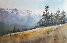 """Into the Woods, Olympic National Park by Shuang Li Watercolor ~ 12"""" (30CM) x 18"""" (46CM)"""