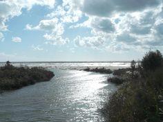 La foce del Tredenari, al limitare della Riserva naturale e all'inizio del lungomare.