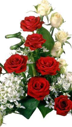 Bouquet Of Roses - Beautiful Flower Arrangements and Flower Gardens Rose Arrangements, Beautiful Flower Arrangements, Send Roses, Weekend Greetings, Montreal Botanical Garden, Red Rose Bouquet, Cemetery Flowers, Garden Wedding Decorations, Happy Weekend