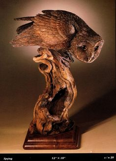 Barn Owl by Jim Harden, offered for sale by Ditto Galleries. www.dittogalleries.com