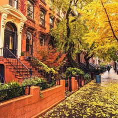 Autumn in Carroll Gardens, Brooklyn, NYC