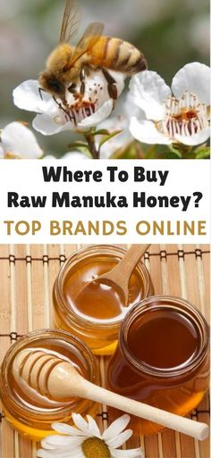 Where to buy raw & manuka honey? Discover how to choose best manuka honey online? Easy guide to find the best honey in the world. via /leanhealthywise/