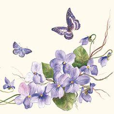 bloemen-vlinders-violett