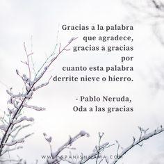 """Quote by Pablo Neruda on """"gracias."""" """"Gracias a la palabra que agradece, gracias a gracias..."""" from his poem """"Oda a las gracias."""" #spanishquotes #dichos Pablo Neruda, Thanks In Spanish, Gk Chesterton, Language Quotes, Alice Walker, Rabindranath Tagore, Tiny Gifts, Max Lucado, Find Quotes"""