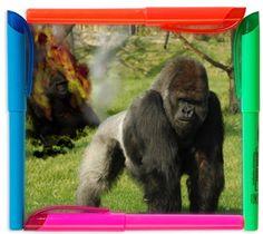 Cornici per le tue foto, myFrame applica delle cornici simpatiche alle tue immagini -> http://www.creareonline.it/2009/04/cornici-per-le-tue-foto-myframe-applica-delle-cornici-simpatiche-alle-tue-immagini-002527.html By Creareonline.it