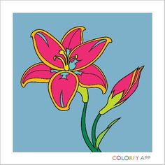 Get the game colorfy soooo fun for udults and kids!
