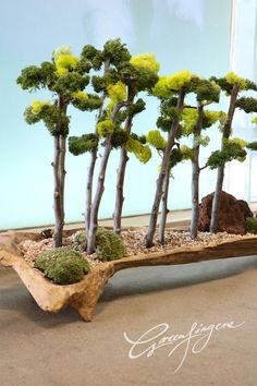 greenfingers tree design Moss Wall Art, Moss Art, Artificial Floral Arrangements, Orchid Arrangements, Succulent Gardening, Container Gardening, Ikebana, Moss Decor, Plantas Bonsai