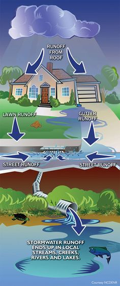 Stormwater runoff is polluting our waterways and hurting the environment.  Design a way to conserve it and find a beneficial use:  DO YOUR PART.