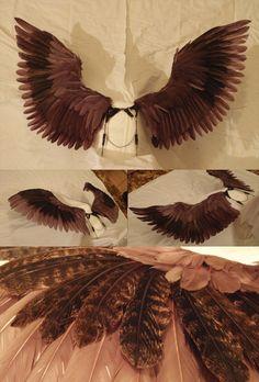 Sparrow wings by *bueshang on deviantART