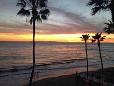 Sunset at Surf & Sand! www.surfandsandresort.com
