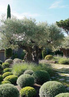 38 Eye-Catching Mediterranean Backyard Garden Décor Ideas | Gardenoholic