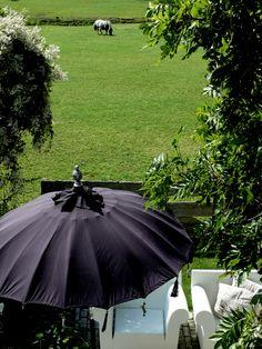 Garden Outdoor Living Patios, Outdoor Rooms, Outdoor Gardens, Outdoor Decor, Outdoor Ideas, Backyard Ideas, Garden Ideas, Outdoor Furniture, Allium Flowers