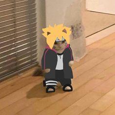 Pet Anime, Anime Girlxgirl, Anime Animals, Otaku Anime, Kawaii Anime, Wallpaper Naruto Shippuden, Naruto Shippuden Anime, Naruto Shuppuden, Funny Naruto Memes