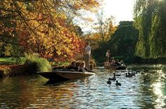 Punting on the Avon River with Optional Christchurch Gondola and Botanic Gardens Tour 2018