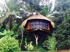 7 Epic (yet affordable) Airbnbs to Stay in Sri Lanka. | The Shooting Star | Bloglovin'