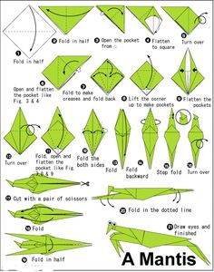 how to make origami praying mantis – Origami Ideas Origami Design, Instruções Origami, Origami And Kirigami, Origami Folding, Paper Crafts Origami, Origami Stars, Paper Folding, Origami Insects, Dollar Origami