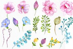 Watercolor wedding flowers clipart - Illustrations