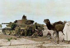 Crónica fotográfica de la Segunda Guerra Mundial 27317 - Maldito Insolente