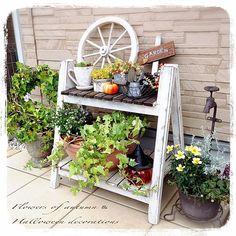 Scrap Wood Projects, Foliage Plants, Garden Styles, Indoor Plants, Wood Signs, Garden Design, Diy And Crafts, Wedding Decorations, Interior