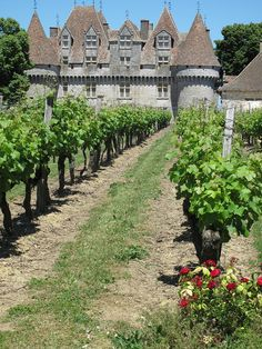 Monbazillac, Dordogne The chateau gives its name to the wine region most famous for its sweet wine