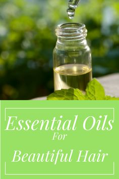 Want to achieve beautiful and strong hair naturally? Add essential oils to your hair care routine. Not only do essential oils smell amazing but they are nourishing, refreshing, and inexpensive. I absolutely love implementing essential oils into my hair regimen.I have noticed a tremendous amount …