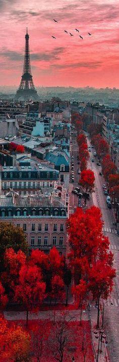 PARIS UM SONHO UM DESEJO