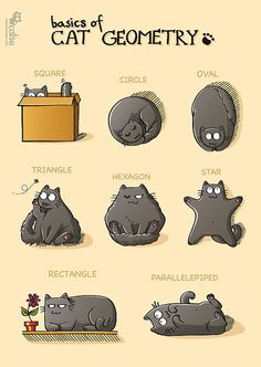 Geometry, Feline Edition | Community Post: 22 Cool Classroom Posters Under $12 You Can Find On Etsy