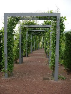Pergola Arch ~ nice look! and definite potential as a DIY.