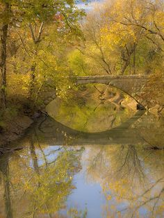 Autumn in Rock Bridge, Kansas