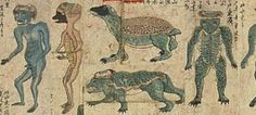 http://www.dailymail.co.uk/sciencetech/article-2644036/Are-bones-water-demon-Remains-mythological-Kappa-Japan.html