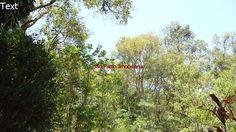 Chácara com 3 Quartos à Venda, 5000 m² Mairinque - Zona Rural, Ref - 709 Zona Rural, Mairinque, SP