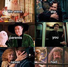 And half of them are gone. How kind of you *sobs i - Memes Harry Potter Harry Potter World, Mundo Harry Potter, Harry Potter Puns, Harry James Potter, Harry Potter Universal, Harry Potter Characters, Harry Potter Triste, Gina Weasley, Desenhos Harry Potter