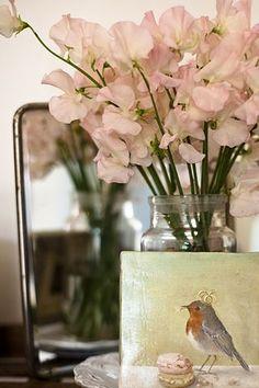 love the bird picture in the corner