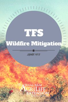 The Texas A&M Forest Service is committed to continuous wildfire mitigation and prevention programs that reduce hazardous conditions, which lower the risks from wildfires.