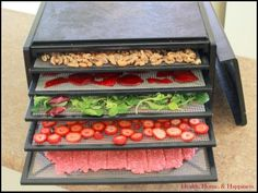 20 Dehydrator Recipes - protein rich, kid friendly, sweet, savory 2