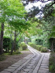 """""""The road to Daisen-in"""" leads to one of Japan's most iconic dry gardensin Kyoto. Photograph by Miss Vichar via Flickr."""