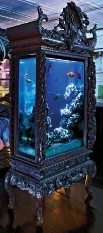 Might be able to find some cool crown molding type materials or dissassemble some old piece of furniture thats a cast off to make the fishtank look even cooler. get more only on http://freefacebookcovers.net