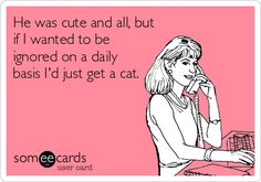He was cute and all, but if I wanted to be ignored on a daily basis I'd just get a cat. #dating #singlelife #catlady