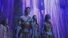 Na'vi - The Humanoid wiki - Humanoids, Whatnots, Anything Muppets ...