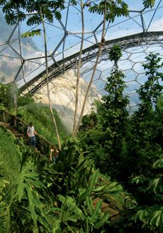 What I pictured the inside of the Juvi looks like at the school on Barnum 5.   ~ Roma ~      Eden Project biodomes in Cornwall, England