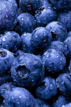 Dark berries, like these amazing-looking are packed with antioxidants & other nutrients. My favorite fruit. It's crazy how so many nature made objects have their own natural, perfect patterns. Photo Fruit, Fruit Picture, My Favorite Color, My Favorite Things, In Natura, Blue Aesthetic, Aesthetic Food, Canning Recipes, Cranberries