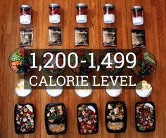 Meal Prep 1,200 - 1,499 Calorie Level