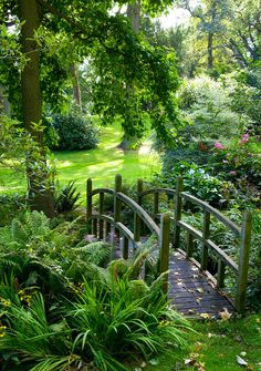 secret gardens, green garden, dream, the bridge, hous, backyard, bridges, place, pond
